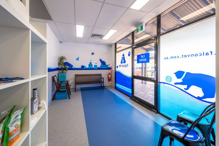 Commercial Fitout Perth - Vet